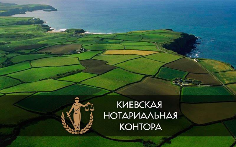 Договор купли-продажи земельного участка нотариус киев осокорки